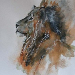 Lion. Ink and wash on paper. Private collection.