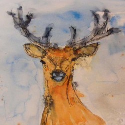 "Stag 2. Ink and wash on paper. Unmounted 22 X 16 inches. <a href=""https://www.fiknox.com//contact/"" target=""_self"">For sale - £45</a>"