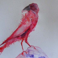 Red crow. Ink and wash on paper. Private collection.