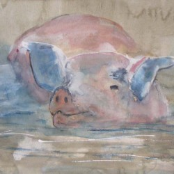 Happy pig. Mixed media on paper. Private collection.