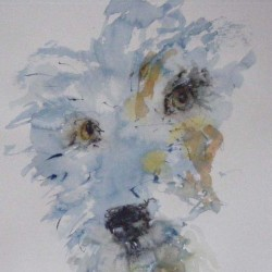 Wee dog. Watercolour on paper. Private collection.